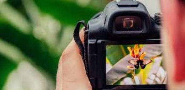 Photography College: The Top Colleges