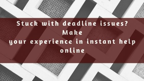 Stuck with deadline issues Make your experience in instant help online