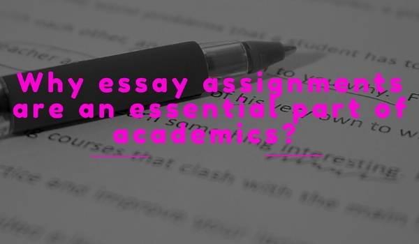 Essay Assignments