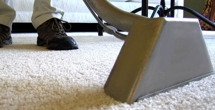 What To Look For In Carpet Cleaning Irvine?   Teecycle